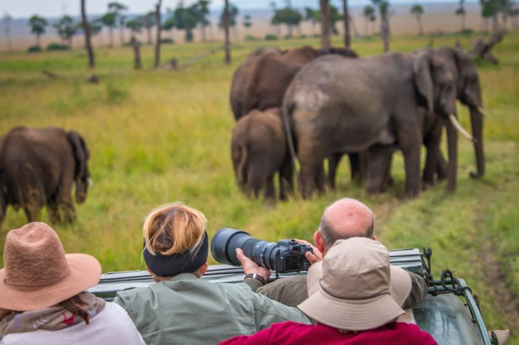 Group Tour ( How much does a Kenyan Safari Cost)