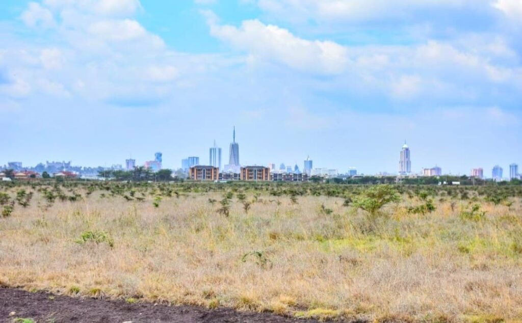 The Back Drop of the the Nirobi City from the Park
