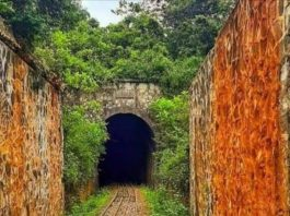 Buxton Tunnel in Limuru, One of the hidden gems in Kenya