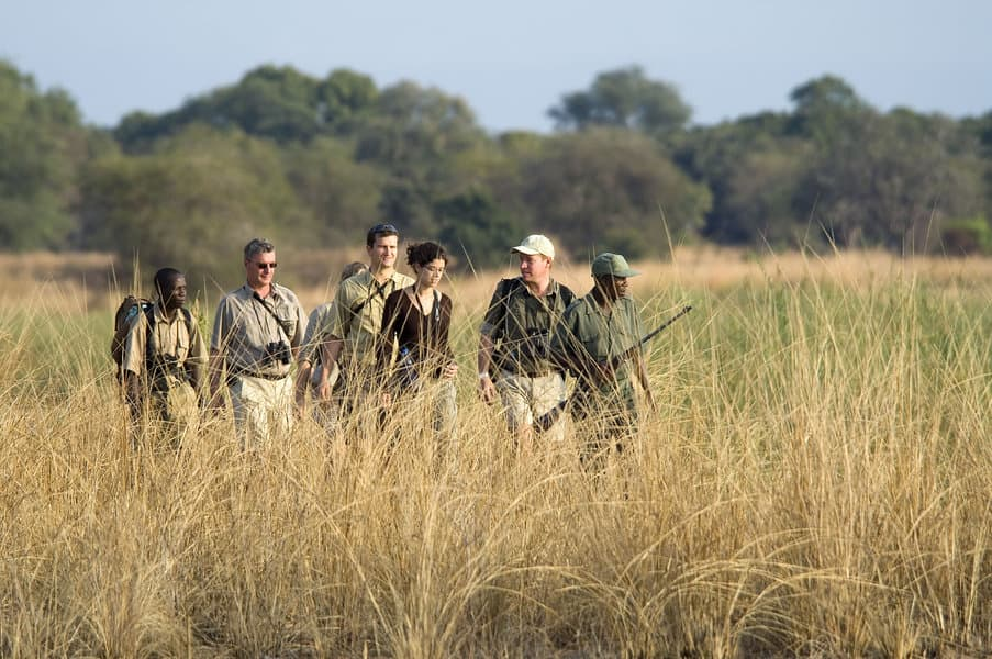Walk Safari at the South, led by an armed guide (Image: Robin Pope)