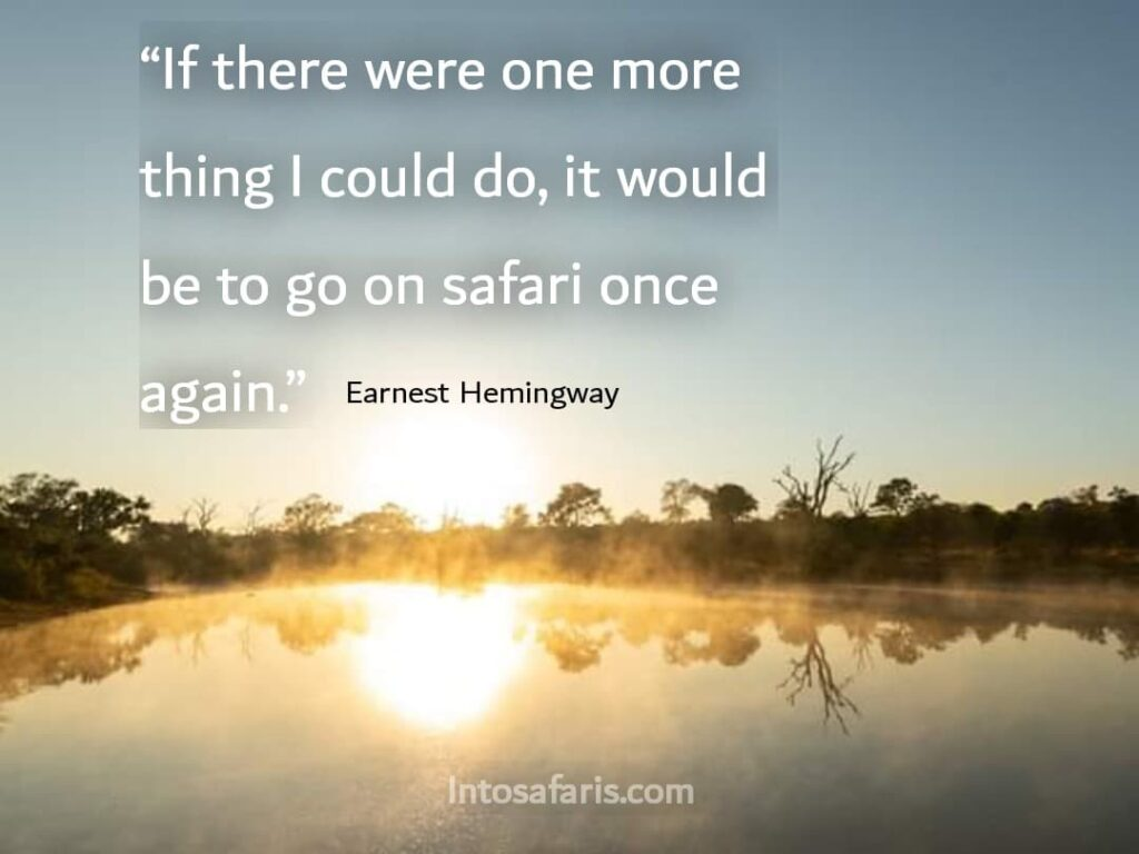 If there was one more thing (Best Travel quotes)