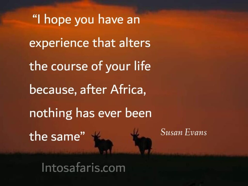Experience that alters (Best Travel quotes)
