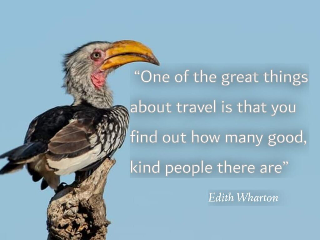 One of the great things ( Best Travel quotes)