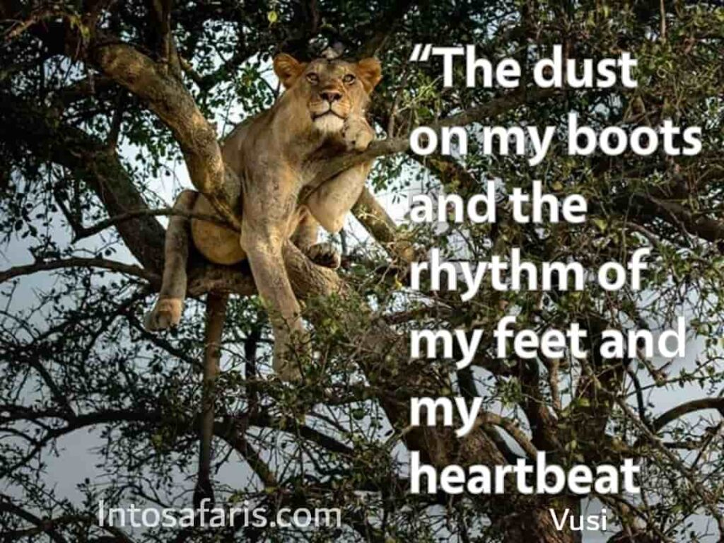 Dust on my boot (Best Travel quotes)