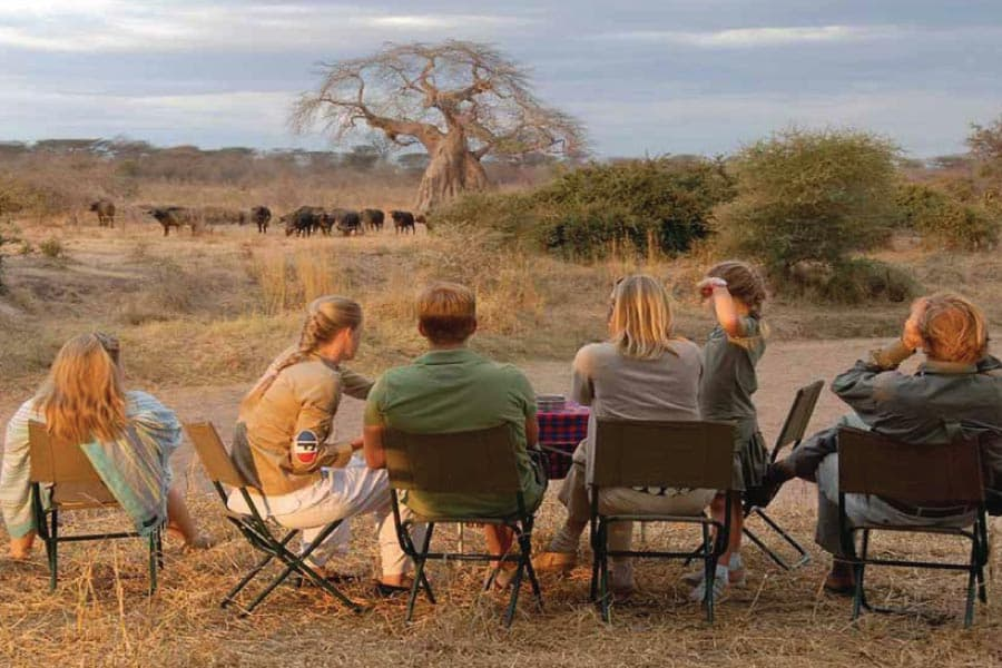 Ruaha National Park (Image East African Jungle)