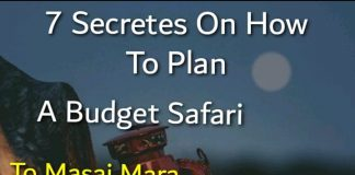 How to Plan Budget Safari to Masai Mara