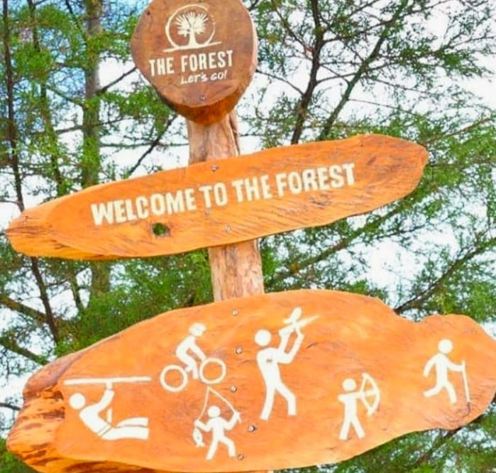 Welcome to the Forest Signage