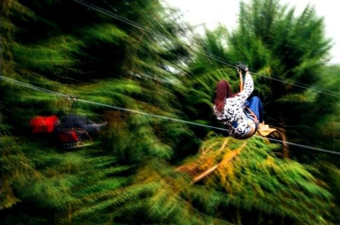 Ziplining At The Kereita Forest Kenya