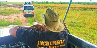 Travelling Myths (Game Drive at Masai Mara National Reserve)