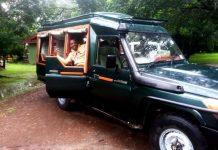 Why you Should Book Your Safari with a Tour Operator