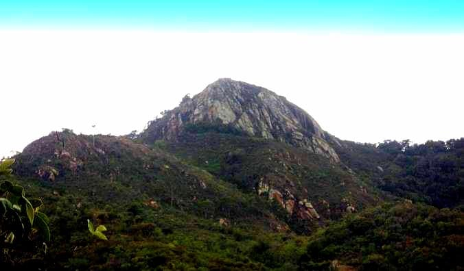 Kiangombe Hill Forest one of the Tourist Attractions in Embu County