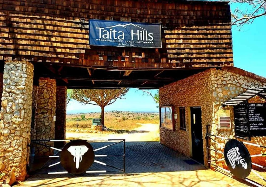Taita Hills Wildlife Sanctuary.