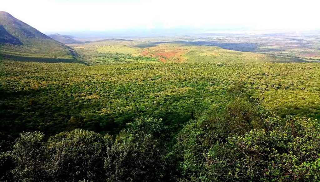 The Great Rift Valley View Point a stop over to Lake Nakuru National Park