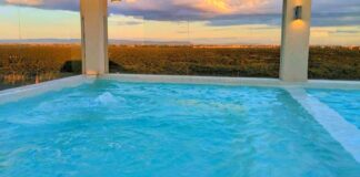 Great View of Nairobi National Park from Four Points by Sheraton Nairobi Airport