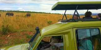The East Africa Safari Itinerary