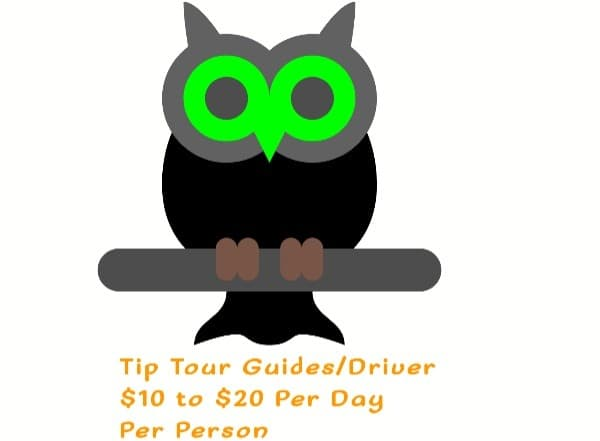 How much should i Tip Safari Guide