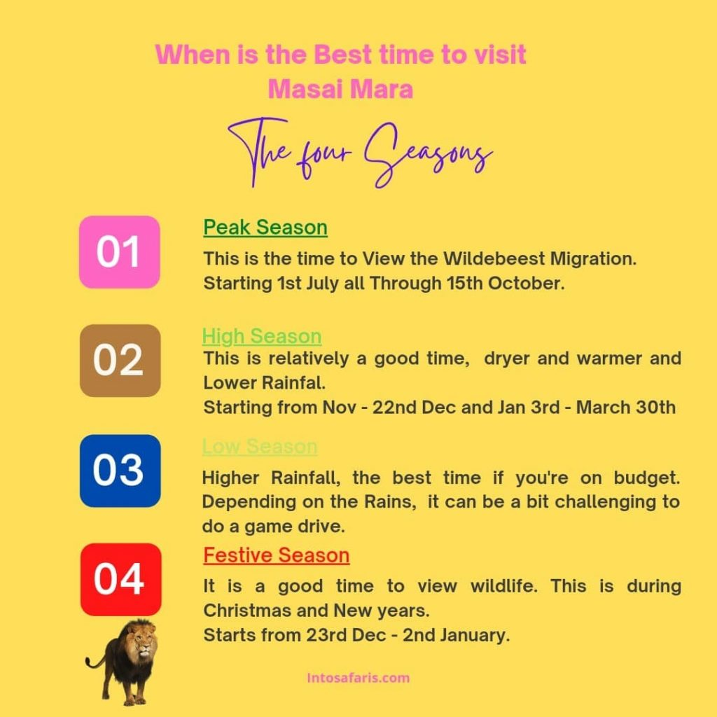 Which is the Best Month to go on Safari?
