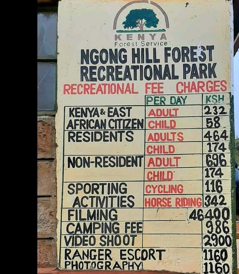 Entry Charges Ngong Hills 2021